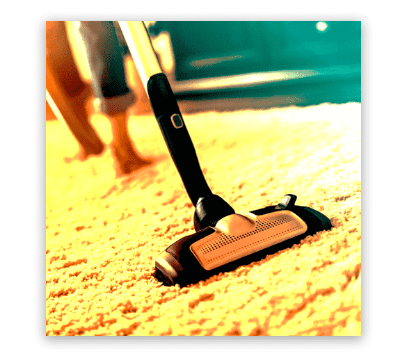 Professional Carpet Cleaning Forestville